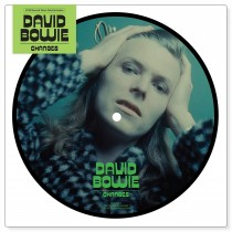 "DAVID BOWIE, CHANGES/EIGHT LINE POEM, 7"" PICT DISC, RSD 2015 EXCLUSIVE, 40TH"